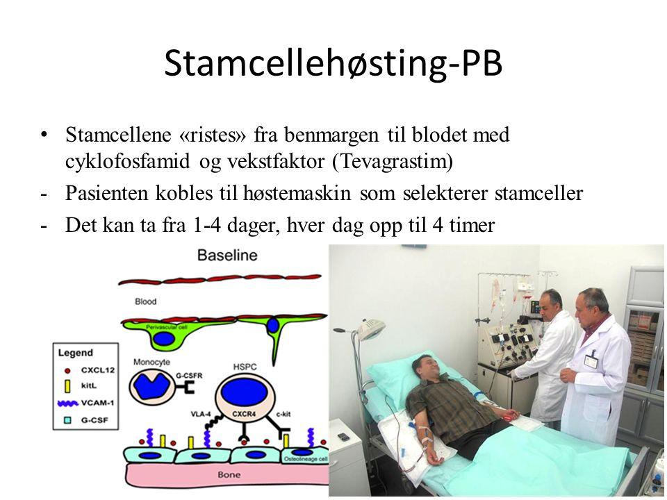 Stamcellehøsting-PB Stamcellene «ristes» fra benmargen til blodet med cyklofosfamid og vekstfaktor (Tevagrastim) -Pasienten kobles til høstemaskin som selekterer stamceller -Det kan ta fra 1-4 dager, hver dag opp til 4 timer