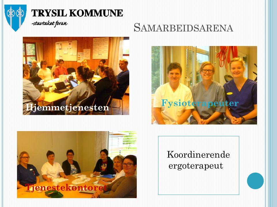 S AMARBEIDSARENA Fysioterapeuter Hjemmetjenesten Tjenestekontoret Koordinerende ergoterapeut