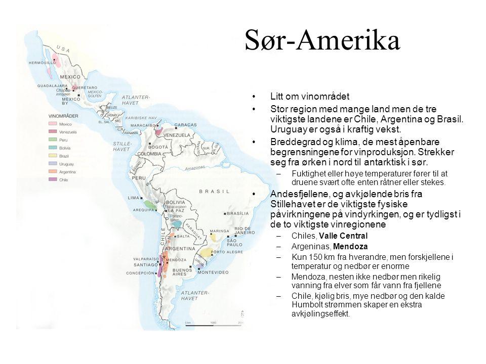 Sør-Amerika Litt om vinområdet Stor region med mange land men de tre viktigste landene er Chile, Argentina og Brasil.