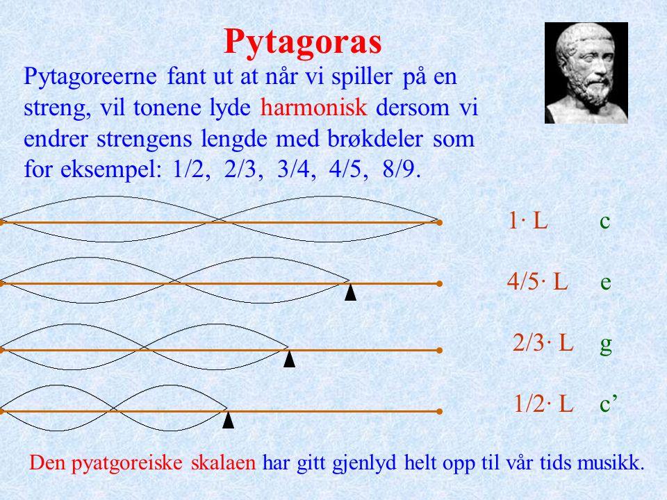 Naturlige tall Hele tall Rasjonale tall Reelle tall (rasjonale + irrasjonale tall) Tallene på tallinja deles inn i grupper: 1, 2, 3, 4… 0 -2 -3 -5… 3434 2,78 7979 - 13,895 π e