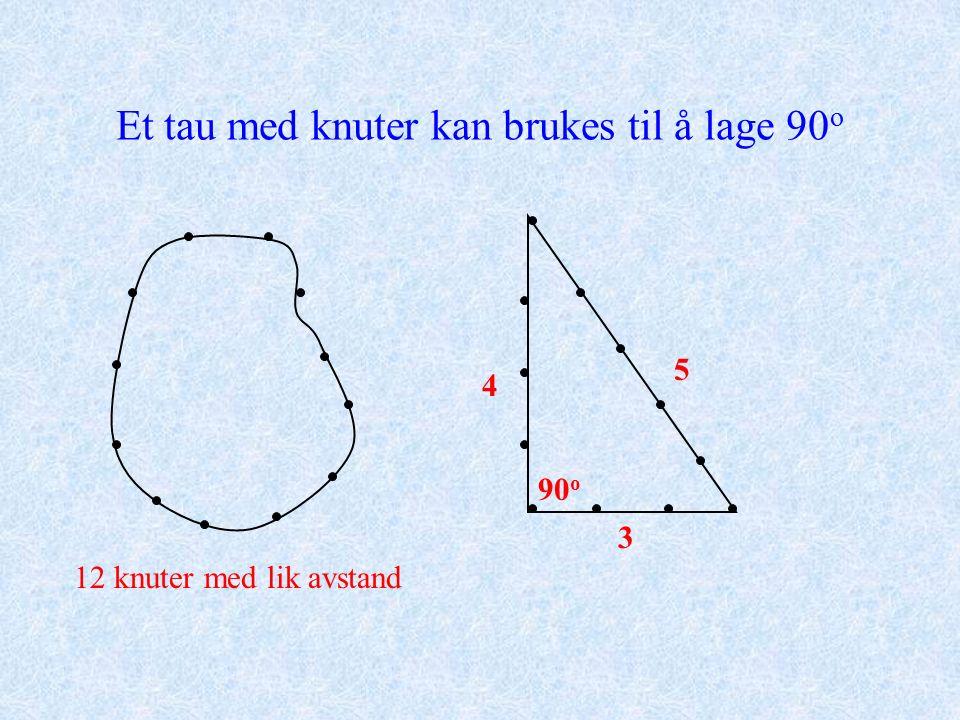 Et tau med knuter kan brukes til å lage 90 o 12 knuter med lik avstand