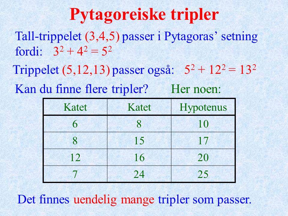 Hengsle-modellen