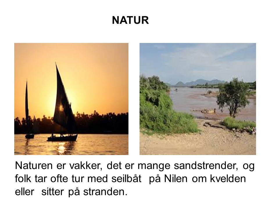 NATUR Naturen er vakker, det er mange sandstrender, og folk tar ofte tur med seilbåt på Nilen om kvelden eller sitter på stranden.