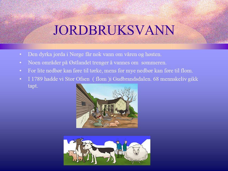 JORDBRUKSVANN Den dyrka jorda i Norge får nok vann om våren og høsten.