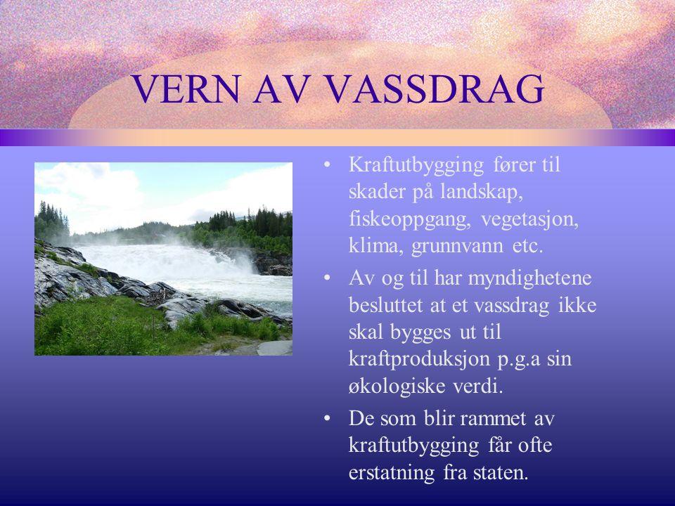 VERN AV VASSDRAG Kraftutbygging fører til skader på landskap, fiskeoppgang, vegetasjon, klima, grunnvann etc.