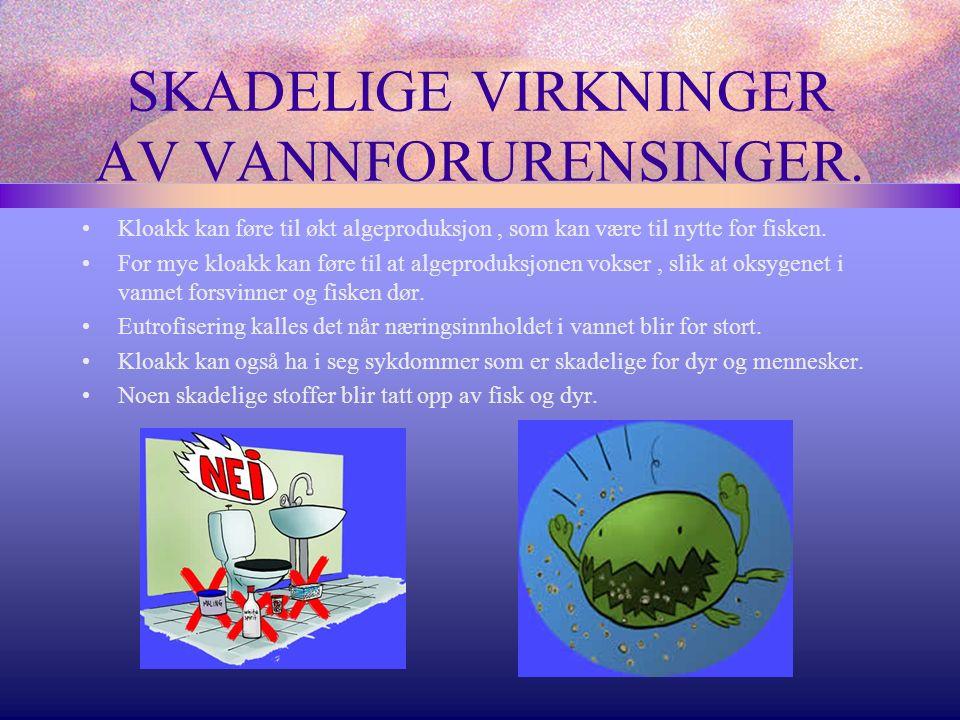 SKADELIGE VIRKNINGER AV VANNFORURENSINGER.