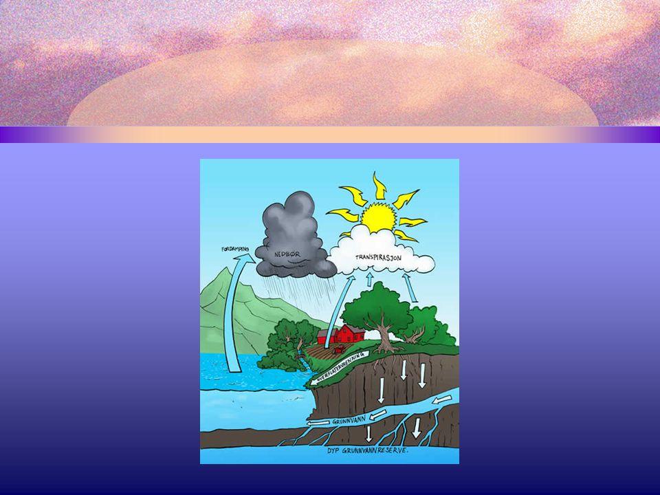 97,5% av alt vann på jorda finnes i havet.2,5 % av vannet er ferskvann.
