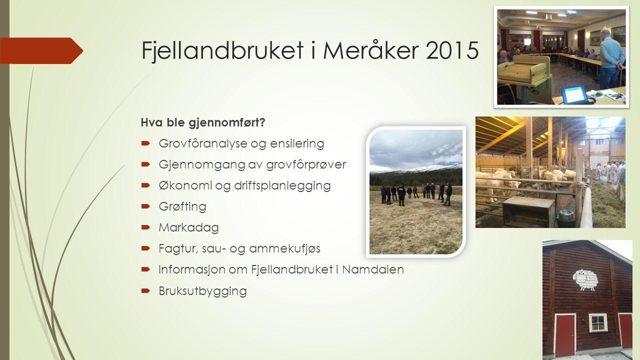 Fjellandbruket i Meråker 2015 Hva ble gjennomført.