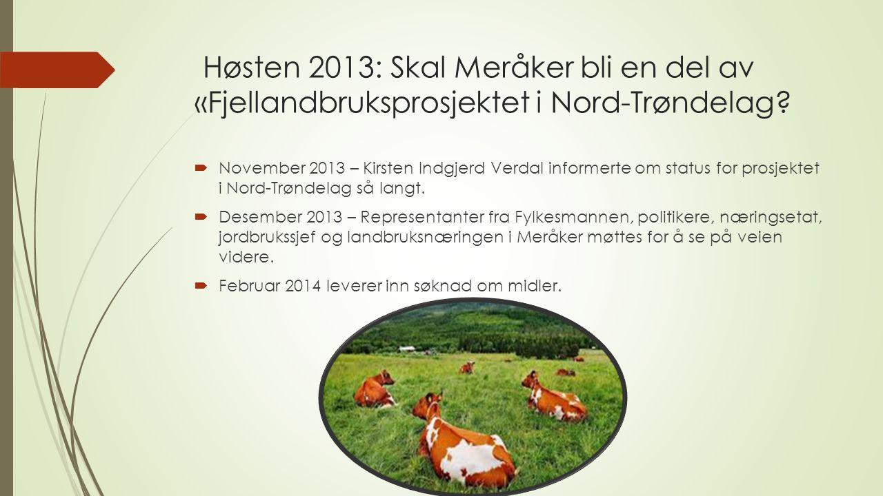 Høsten 2013: Skal Meråker bli en del av «Fjellandbruksprosjektet i Nord-Trøndelag.