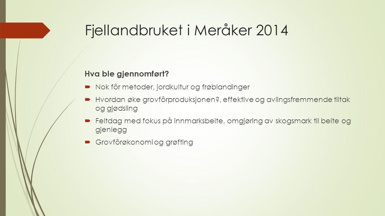 Fjellandbruket i Meråker 2015  Målsetting for 2015:  Følge opp satsingen på grovfôr, ta utgangspunkt i grovfôranalyser.