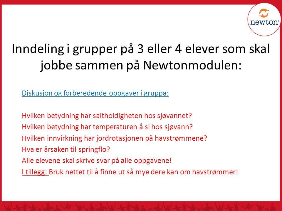 Inndeling i grupper på 3 eller 4 elever som skal jobbe sammen på Newtonmodulen: Diskusjon og forberedende oppgaver i gruppa: Hvilken betydning har sal