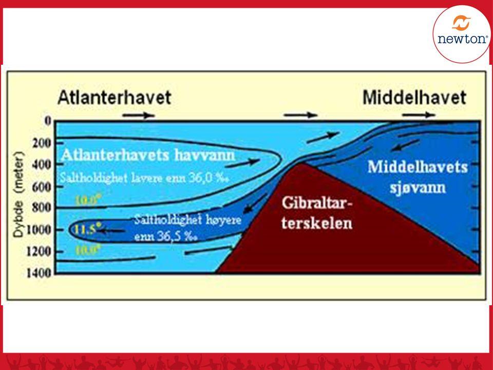 Spørsmål: Hva er tyngst av ferskvann og sjøvann, og hvorfor?