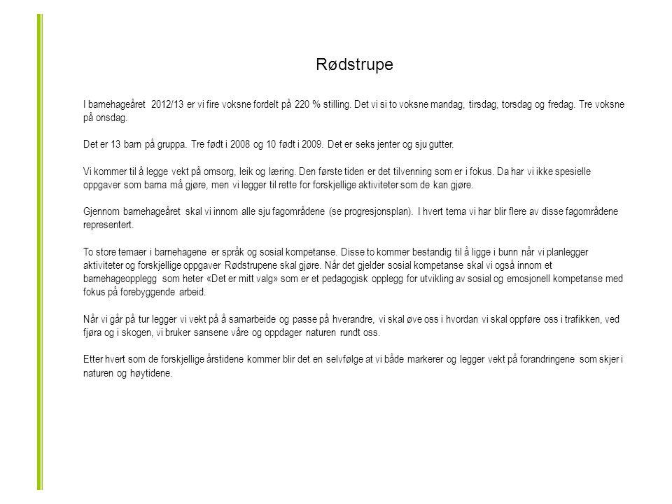 Rødstrupe I barnehageåret 2012/13 er vi fire voksne fordelt på 220 % stilling.