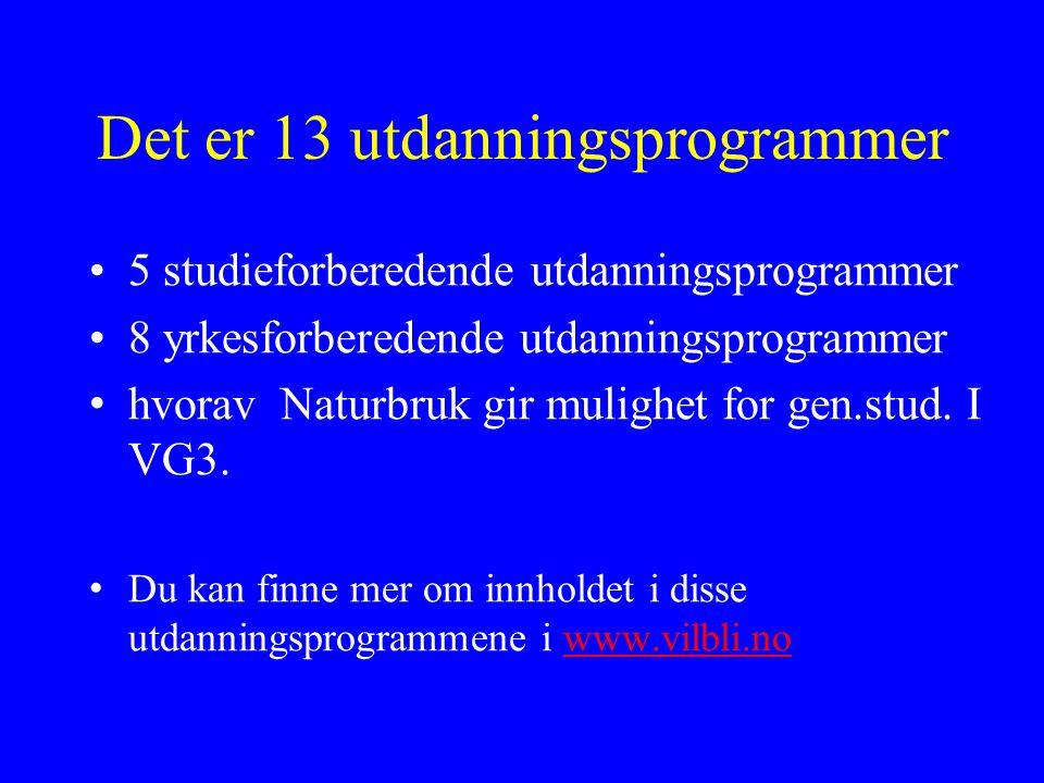 Det er 13 utdanningsprogrammer 5 studieforberedende utdanningsprogrammer 8 yrkesforberedende utdanningsprogrammer hvorav Naturbruk gir mulighet for gen.stud.