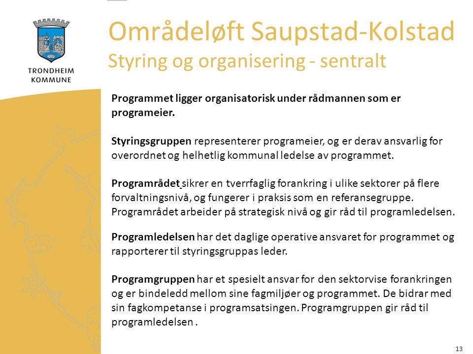 13 Områdeløft Saupstad-Kolstad Styring og organisering - sentralt Programmet ligger organisatorisk under rådmannen som er programeier.