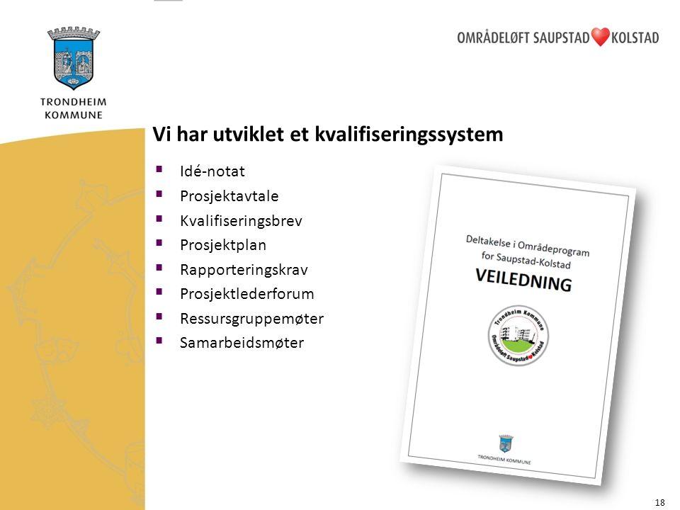 Vi har utviklet et kvalifiseringssystem  Idé-notat  Prosjektavtale  Kvalifiseringsbrev  Prosjektplan  Rapporteringskrav  Prosjektlederforum  Ressursgruppemøter  Samarbeidsmøter 18