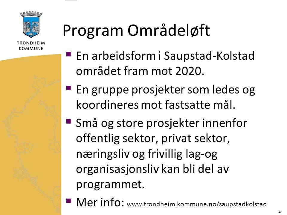 Program Områdeløft  En arbeidsform i Saupstad-Kolstad området fram mot 2020.