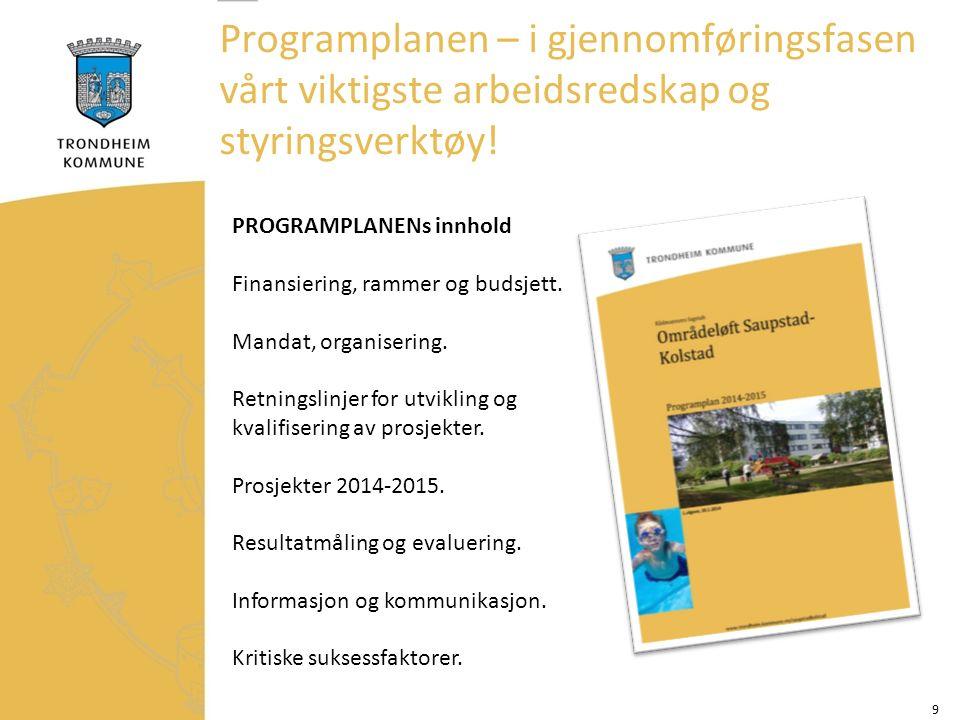 9 PROGRAMPLANENs innhold Finansiering, rammer og budsjett.