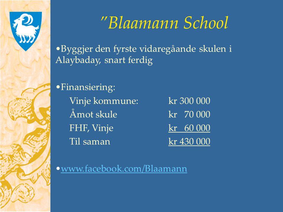 Blaamann School Byggjer den fyrste vidaregåande skulen i Alaybaday, snart ferdig Finansiering: Vinje kommune:kr 300 000 Åmot skulekr 70 000 FHF, Vinjekr 60 000 Til samankr 430 000 www.facebook.com/Blaamann