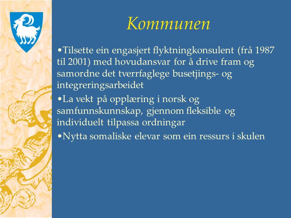 Kommunen Tilsette ein engasjert flyktningkonsulent (frå 1987 til 2001) med hovudansvar for å drive fram og samordne det tverrfaglege busetjings- og integreringsarbeidet La vekt på opplæring i norsk og samfunnskunnskap, gjennom fleksible og individuelt tilpassa ordningar Nytta somaliske elevar som ein ressurs i skulen