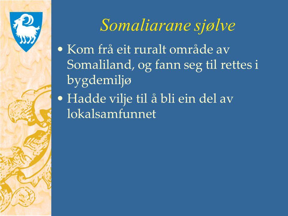 Somaliarane sjølve Kom frå eit ruralt område av Somaliland, og fann seg til rettes i bygdemiljø Hadde vilje til å bli ein del av lokalsamfunnet