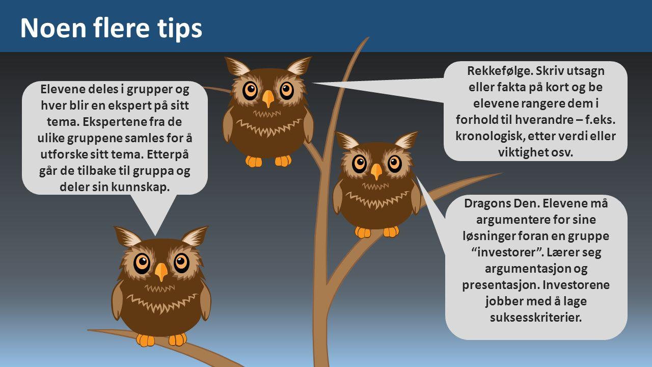 Noen flere tips Elevene deles i grupper og hver blir en ekspert på sitt tema.
