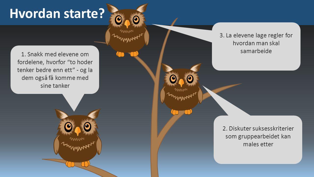 """Hvordan starte? 1. Snakk med elevene om fordelene, hvorfor """"to hoder tenker bedre enn ett"""" - og la dem også få komme med sine tanker 2. Diskuter sukse"""