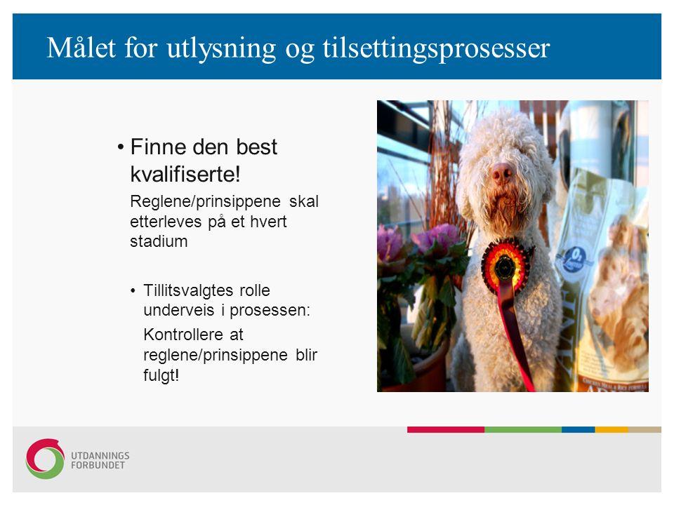 Målet for utlysning og tilsettingsprosesser Finne den best kvalifiserte! Reglene/prinsippene skal etterleves på et hvert stadium Tillitsvalgtes rolle