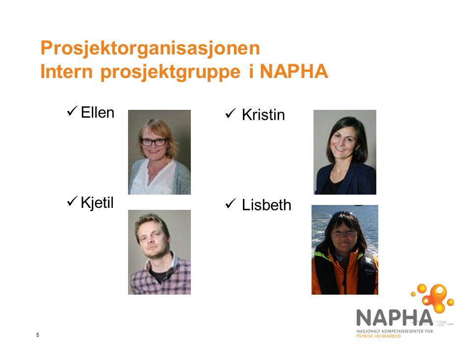 5 Prosjektorganisasjonen Intern prosjektgruppe i NAPHA Ellen Kjetil Kristin Lisbeth