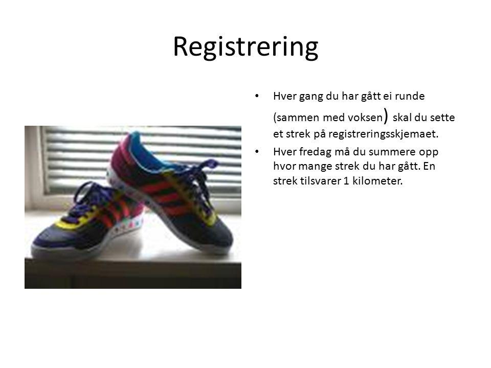Registrering Hver gang du har gått ei runde (sammen med voksen ) skal du sette et strek på registreringsskjemaet.