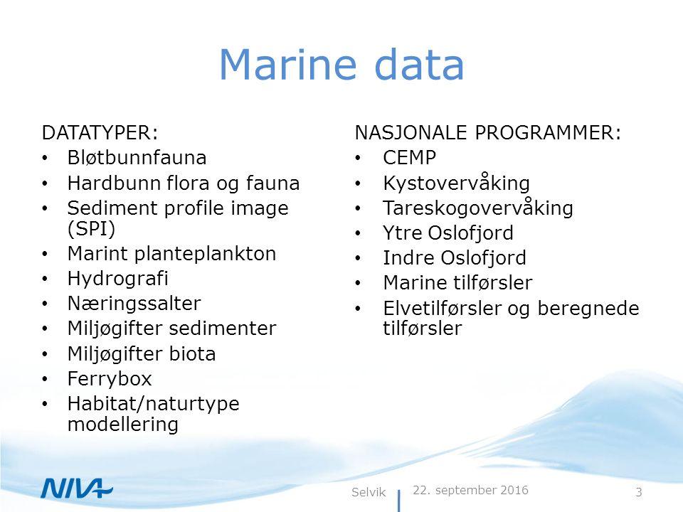22. september 2016 3Selvik Marine data DATATYPER: Bløtbunnfauna Hardbunn flora og fauna Sediment profile image (SPI) Marint planteplankton Hydrografi