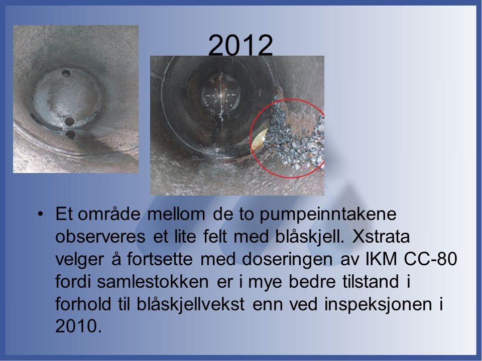 2012 Et område mellom de to pumpeinntakene observeres et lite felt med blåskjell. Xstrata velger å fortsette med doseringen av IKM CC-80 fordi samlest