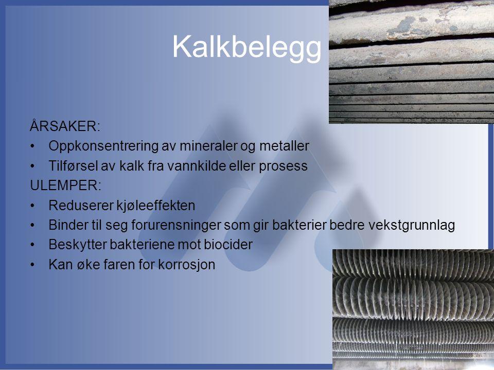 Kalkbelegg ÅRSAKER: Oppkonsentrering av mineraler og metaller Tilførsel av kalk fra vannkilde eller prosess ULEMPER: Reduserer kjøleeffekten Binder ti