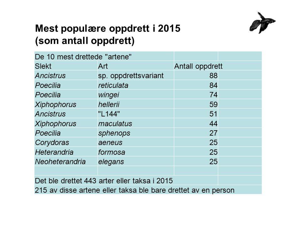 Mest populære oppdrett i 2015 (som antall oppdrett) De 10 mest drettede