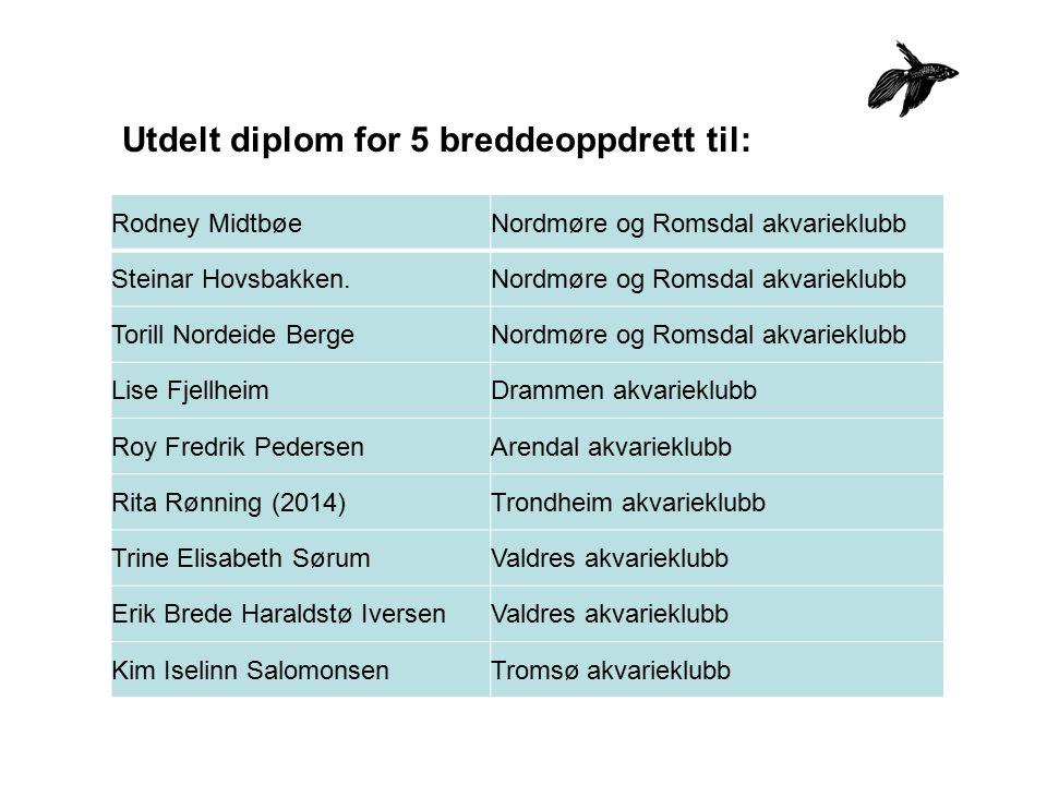 Utdelt diplom for 5 breddeoppdrett til: Rodney Midtbøe Nordmøre og Romsdal akvarieklubb Steinar Hovsbakken.Nordmøre og Romsdal akvarieklubb Torill Nor