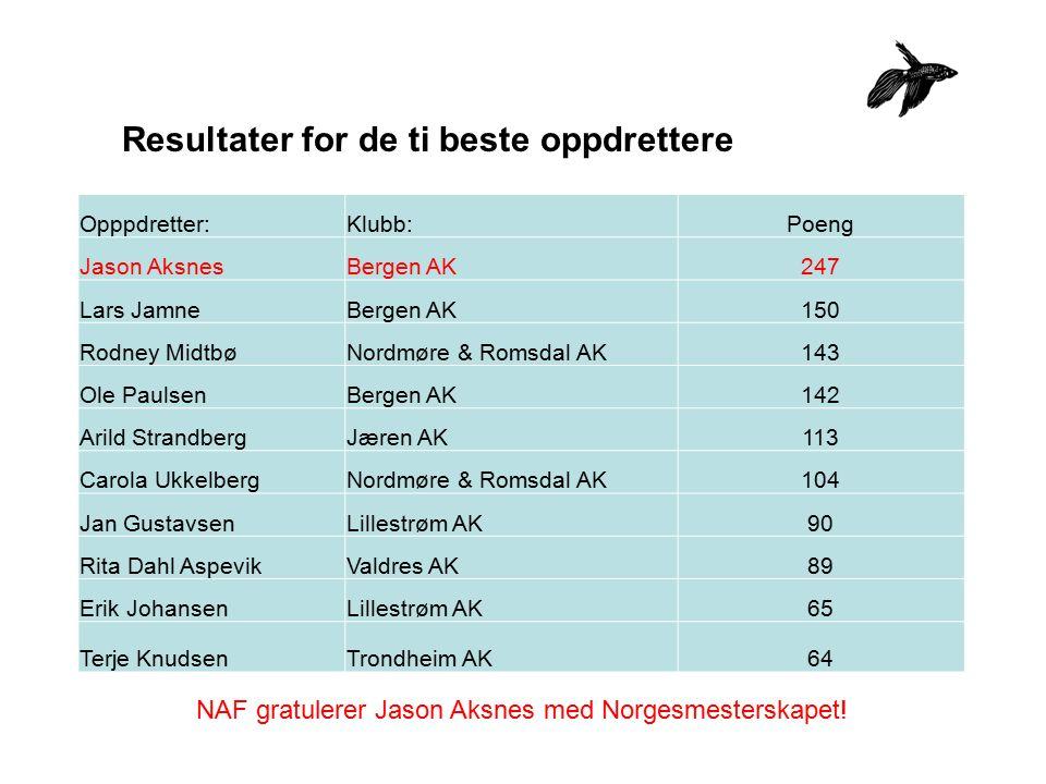 Resultater for de ti beste oppdrettere Opppdretter:Klubb:Poeng Jason AksnesBergen AK247 Lars JamneBergen AK150 Rodney MidtbøNordmøre & Romsdal AK143 O