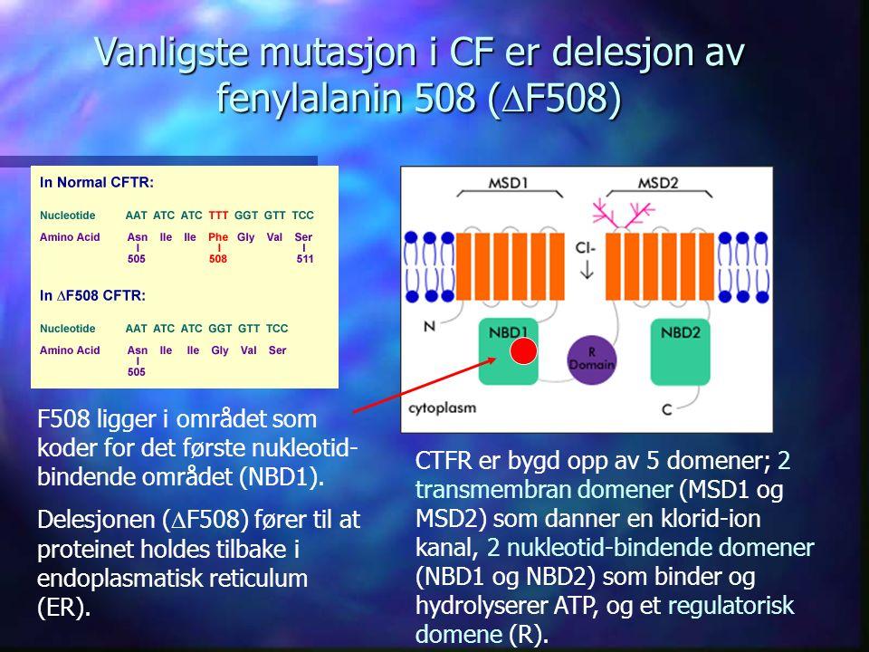CTFR er bygd opp av 5 domener; 2 transmembran domener (MSD1 og MSD2) som danner en klorid-ion kanal, 2 nukleotid-bindende domener (NBD1 og NBD2) som binder og hydrolyserer ATP, og et regulatorisk domene (R).