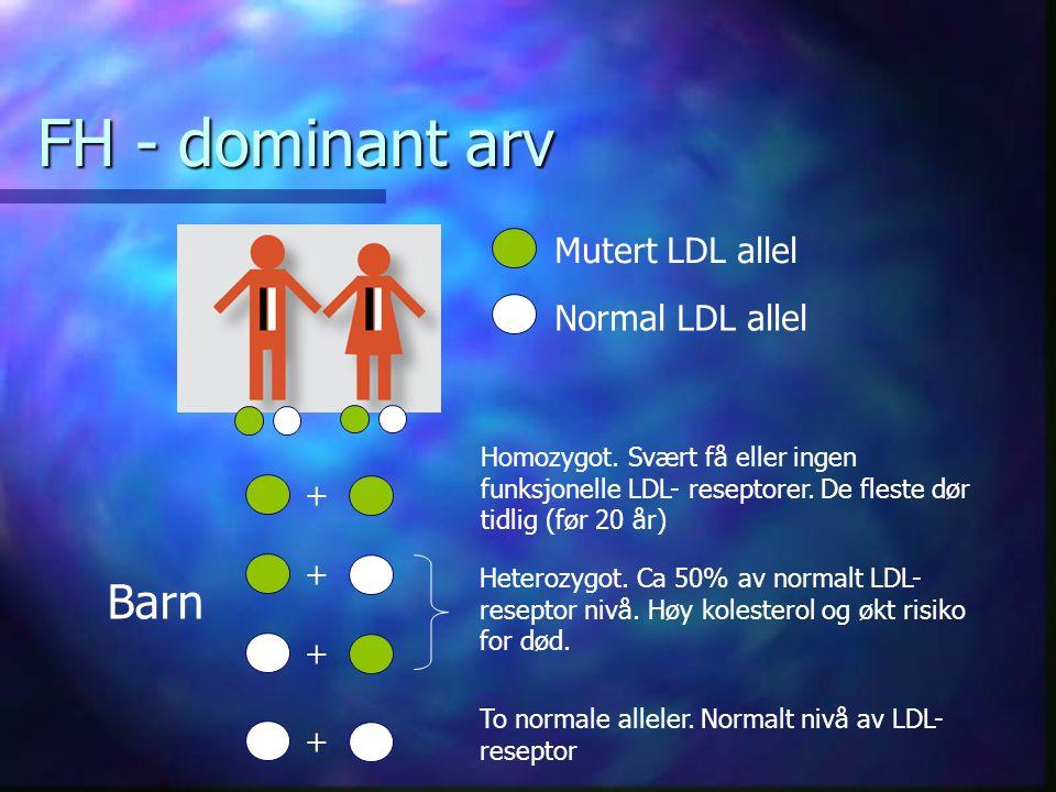 FH - dominant arv + + + + Homozygot. Svært få eller ingen funksjonelle LDL- reseptorer.
