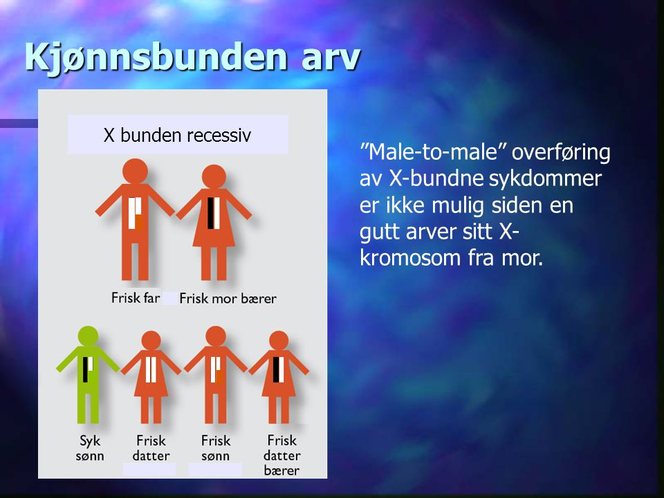 Kjønnsbunden arv X bunden recessiv Male-to-male overføring av X-bundne sykdommer er ikke mulig siden en gutt arver sitt X- kromosom fra mor.