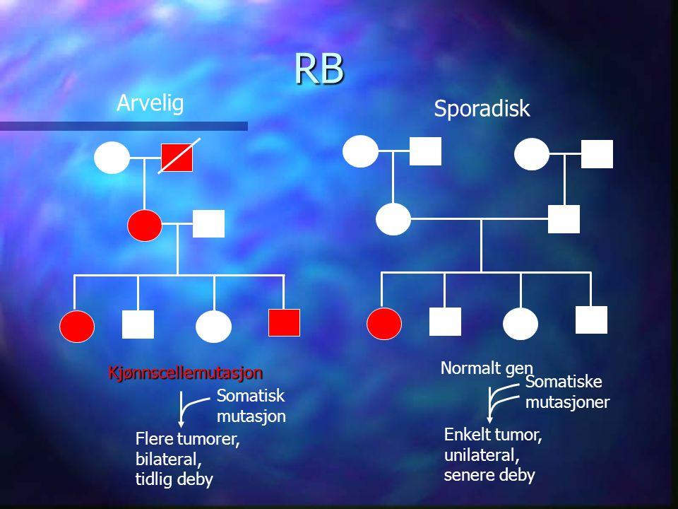 Kjønnscellemutasjon Flere tumorer, bilateral, tidlig deby Normalt gen Enkelt tumor, unilateral, senere deby Somatisk mutasjon Somatiske mutasjoner Arvelig Sporadisk RB
