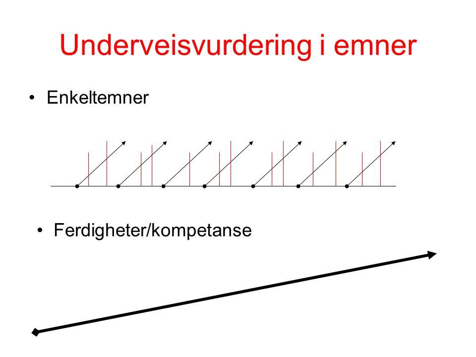Underveisvurdering i emner Enkeltemner Ferdigheter/kompetanse