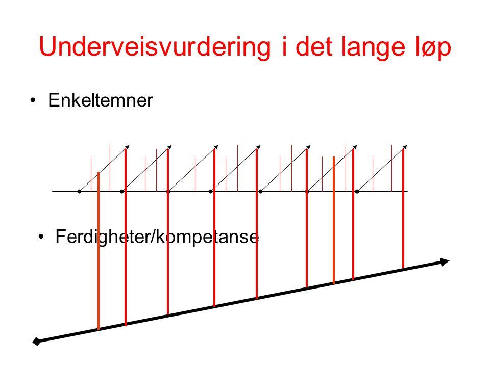 Underveisvurdering i det lange løp Enkeltemner Ferdigheter/kompetanse