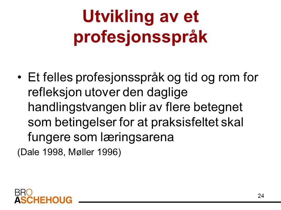 24 Utvikling av et profesjonsspråk Et felles profesjonsspråk og tid og rom for refleksjon utover den daglige handlingstvangen blir av flere betegnet som betingelser for at praksisfeltet skal fungere som læringsarena (Dale 1998, Møller 1996)
