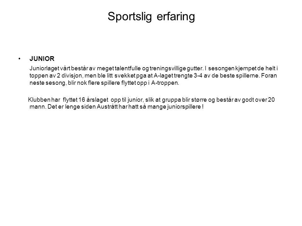 Sportslig erfaring SENIOR A-laget for menn klarte som ny-opprykket å holde plassen i 3 divisjon.