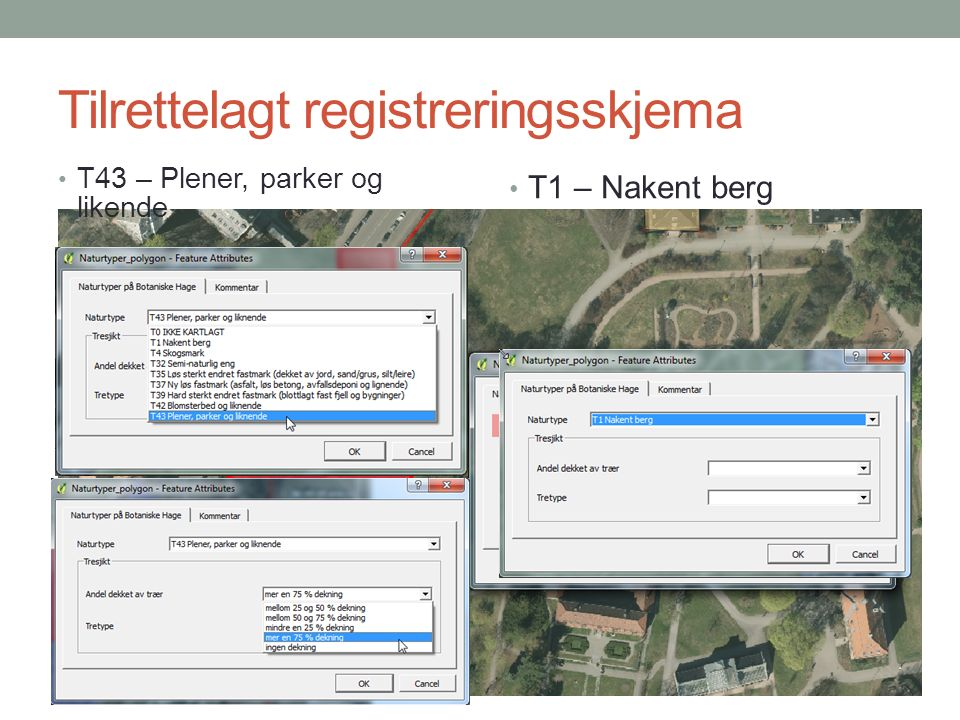 Tilrettelagt registreringsskjema T43 – Plener, parker og likende T1 – Nakent berg