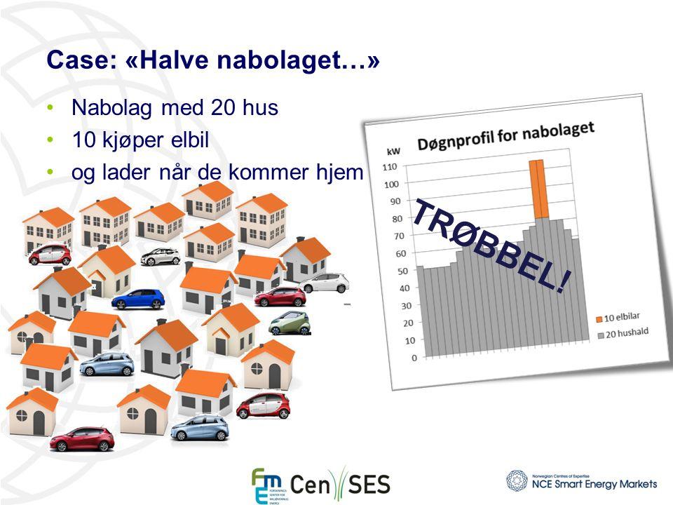 Case: «Halve nabolaget…» Nabolag med 20 hus 10 kjøper elbil og lader når de kommer hjem TRØBBEL!