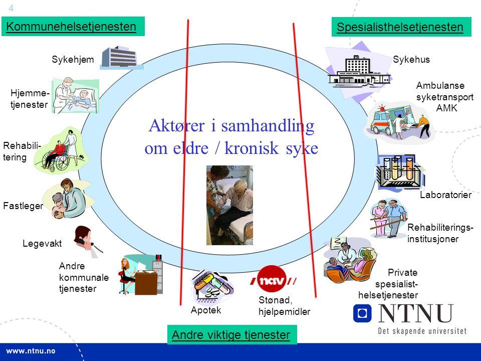 4 Private spesialist- helsetjenester Fastleger Sykehus Apotek Laboratorier Hjemme- tjenester Ambulanse syketransport AMK Kommunehelsetjenesten Spesial