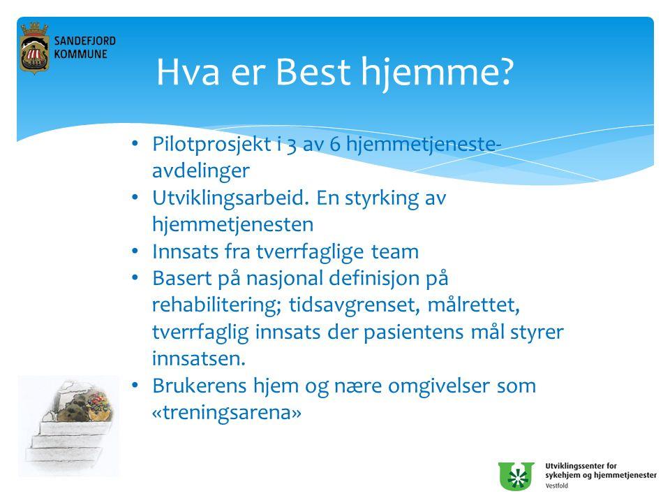 Hva er Best hjemme. Pilotprosjekt i 3 av 6 hjemmetjeneste- avdelinger Utviklingsarbeid.