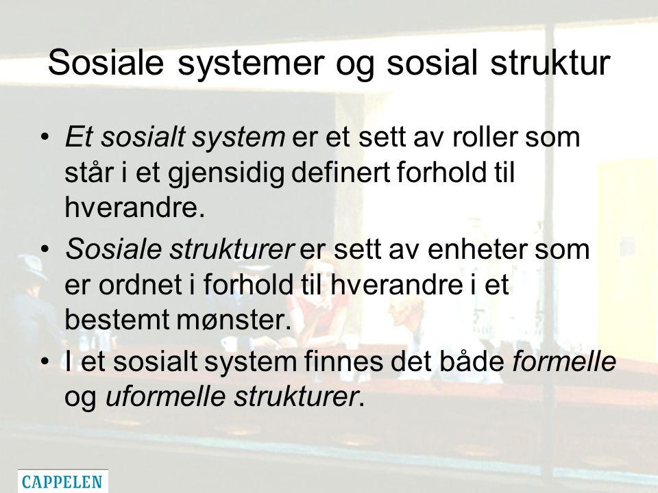 Sosiale systemer og sosial struktur Et sosialt system er et sett av roller som står i et gjensidig definert forhold til hverandre.