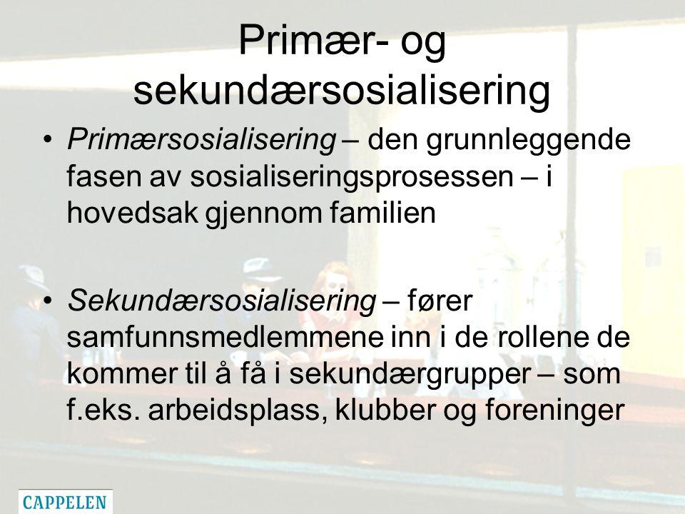 Primær- og sekundærsosialisering Primærsosialisering – den grunnleggende fasen av sosialiseringsprosessen – i hovedsak gjennom familien Sekundærsosialisering – fører samfunnsmedlemmene inn i de rollene de kommer til å få i sekundærgrupper – som f.eks.